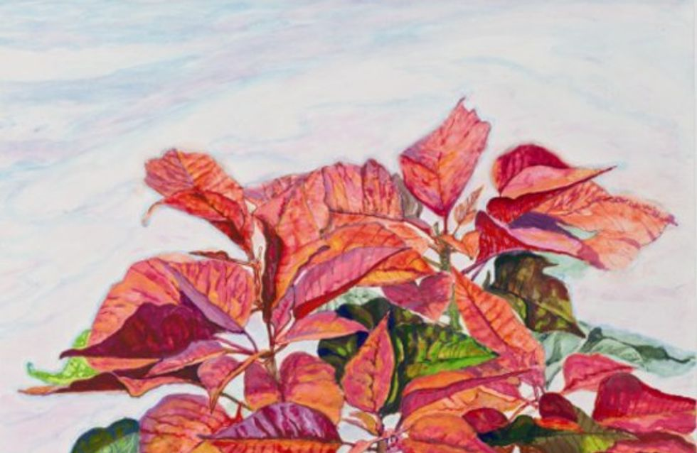 Exposición Spring 2x2: fotografía y pintura