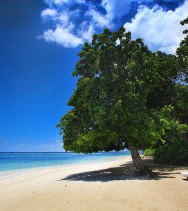 Ile Maurice : bienvenue au paradis