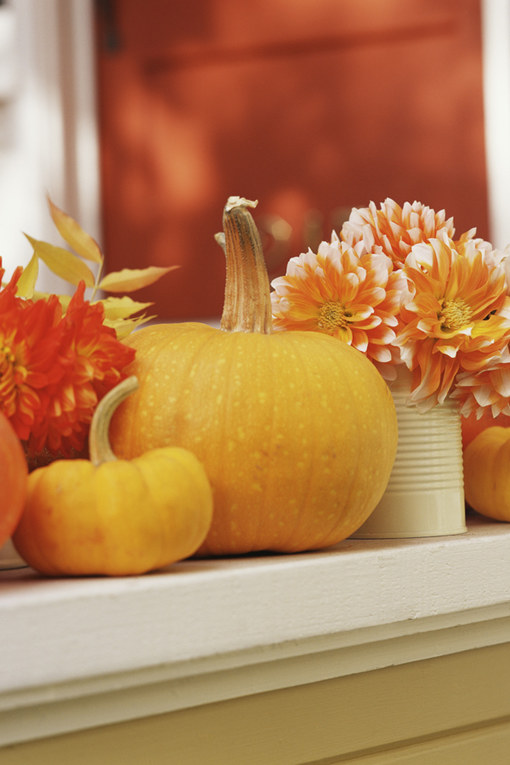 Die schönsten Herbst-Accessoires