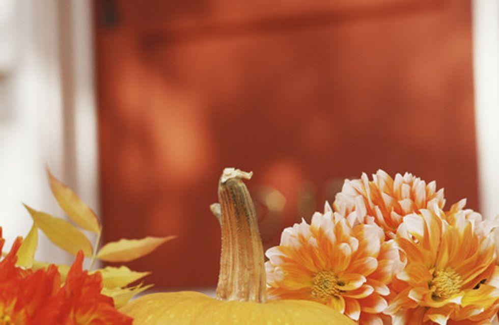Herbst-Accessoires
