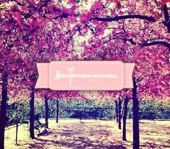 ¡Un octubre lleno de rosa!