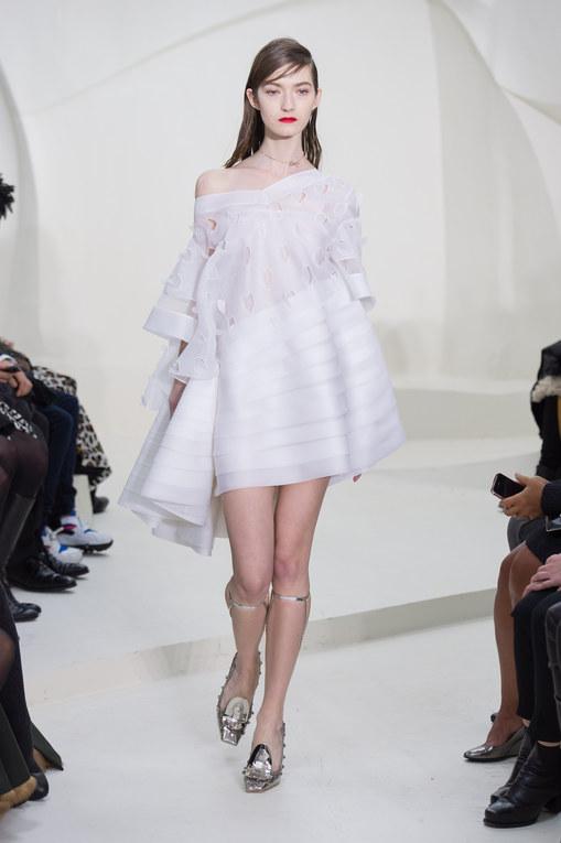 Défilé Christian Dior Haute Couture Printemps-Eté 2014