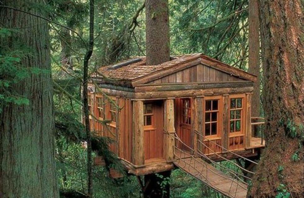 Casas originales en los bosques