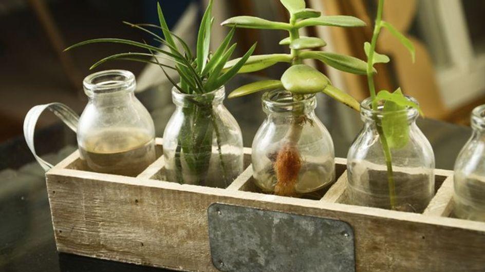25 vasi di design per balconi e giardini