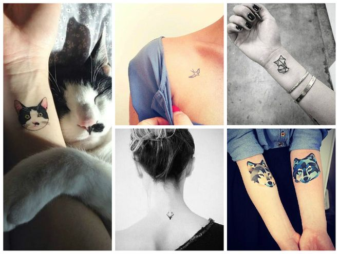 Tatouage animal : Des idées de tatouages