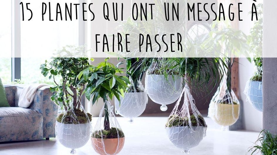 15 plantes qui ont un message à faire passer