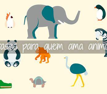 Gosta de animais? Essas frases irão derreter seu ♥