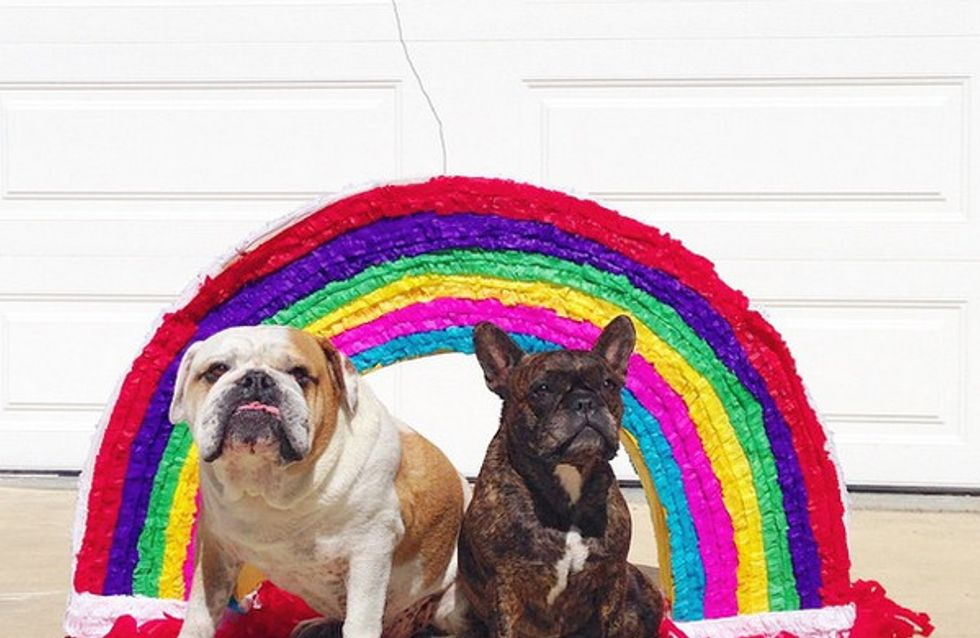 25 perfis do Instagram cheios de cor para você seguir