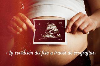 El desarrollo del embarazo semana a semana