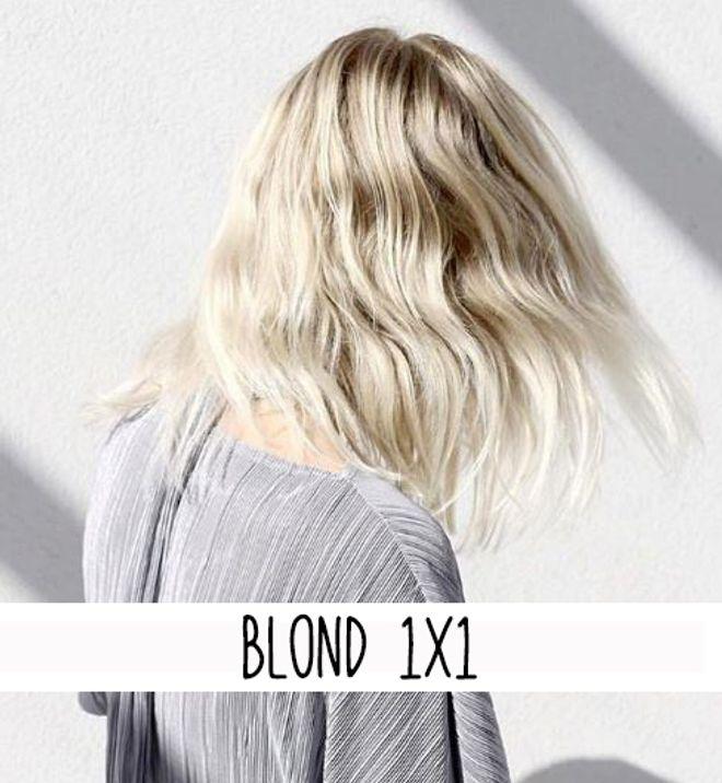 Blond 1x1