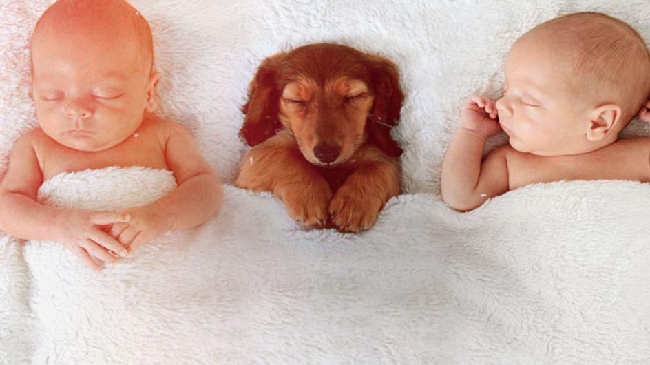 Nombres para gemelos: cuando la decisión se multiplica por 2