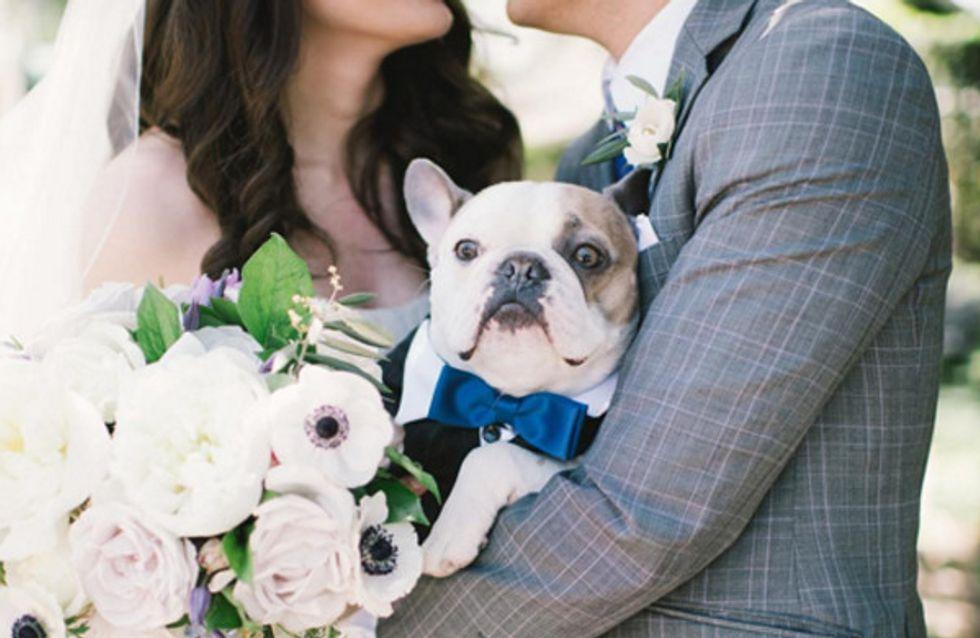 #Instadog: fotos de cachorros participando de casamentos <3