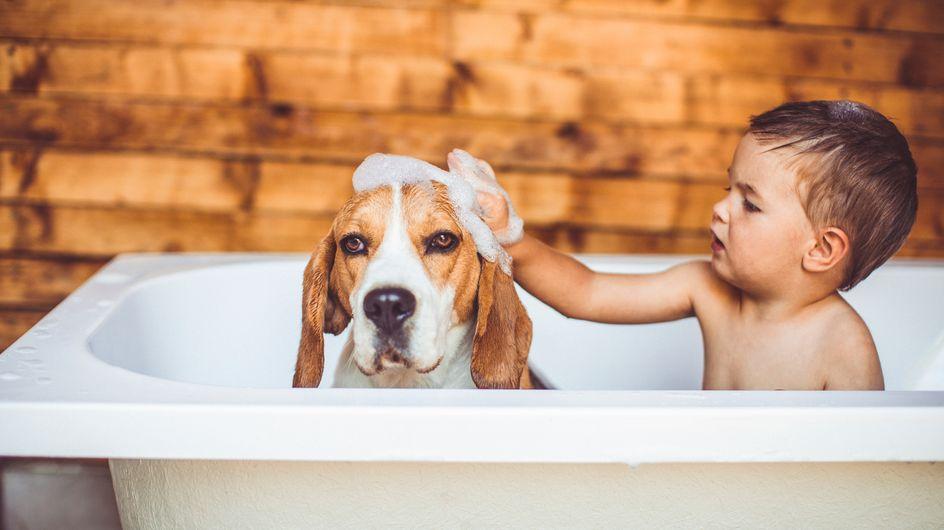 ¡Al agua patos! Convierte su baño en una rutina divertida