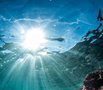 Fotos debaixo d'água para a sereia que existe em você