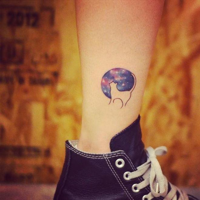 Tatuagem de gato: +90 fotos de tattoos delicadas e femininas 🐈