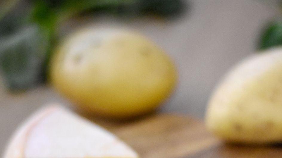 30 recettes pour les fans de fromage