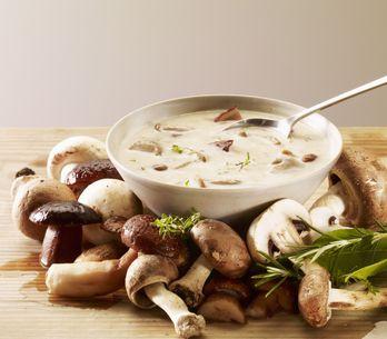 Champignons, plein de recettes de champignons pour enchanter vos assiettes