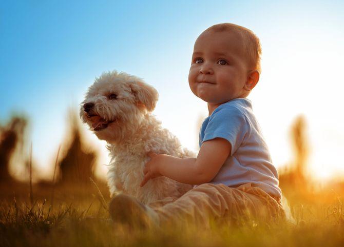 Fotos entrañables de perros y niños