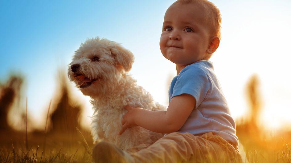 Fotos entrañables de niños con perros, ¡prepárate para emocionarte!