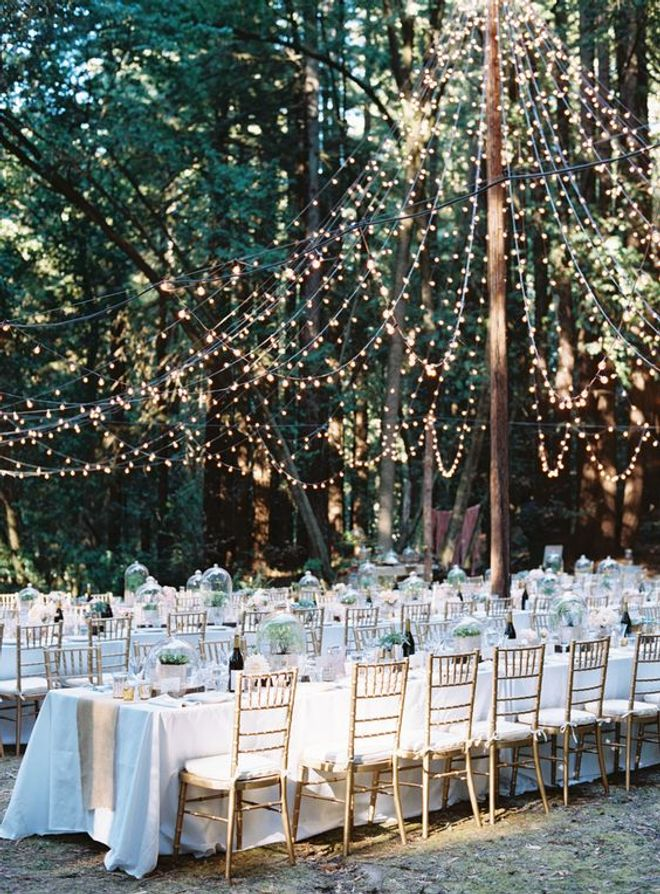 Un mariage dans la forêt