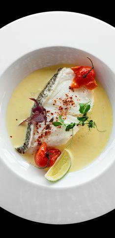 45 recettes de poisson pour frétiller de plaisir
