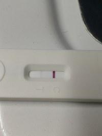 Test Embarazo Claro Es Positivo O Negativo