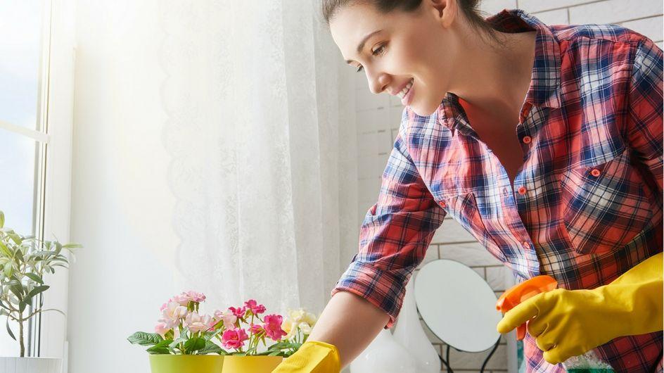 Come pulire casa in modo ecologico: trucchi e consigli per rispettare l'ambiente e risparmiare!