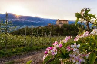 Vacanze in montagna: le attività e i luoghi da scoprire in Trentino - Castel Thun, Val di Non