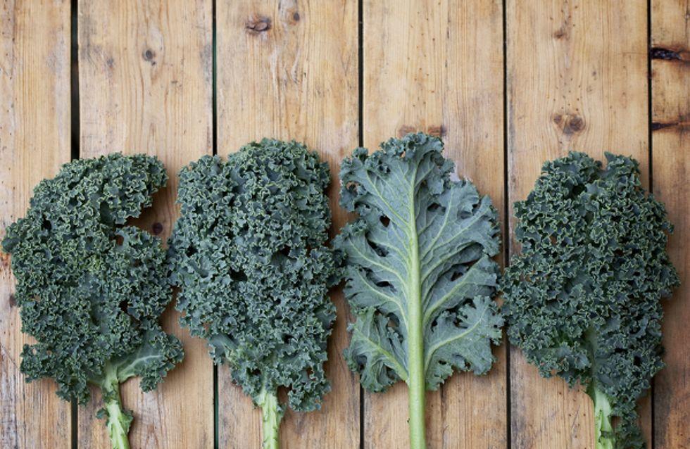Nos recettes pour cuisiner le chou kale