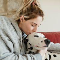 Hunde-Fakten: Was du über deinen Vierbeiner noch nicht wusstest