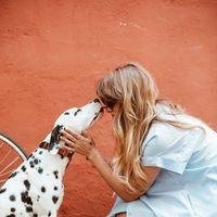 Aufgepasst! Das verrät dein Hund über deine Persönlichkeit