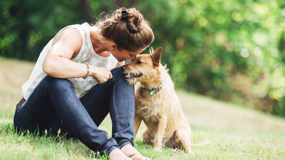 Cosa dice il tuo cane di te?