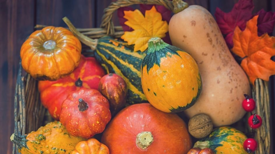 Les légumes de saison en novembre