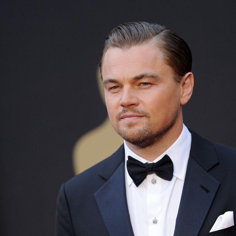 Leonardo Dicaprio Vom Sussen Jungen Zum Weltverbesserer Fotoalbum