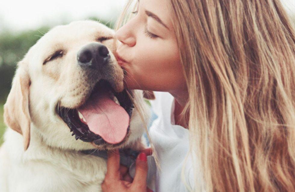 La raza de perro ideal según tu signo del zodiaco