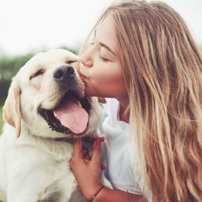 Quelle race de chien vous correspond selon votre signe astro ?