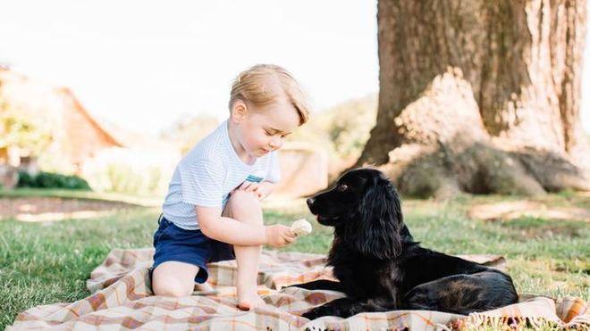 Príncipe George y Lupo