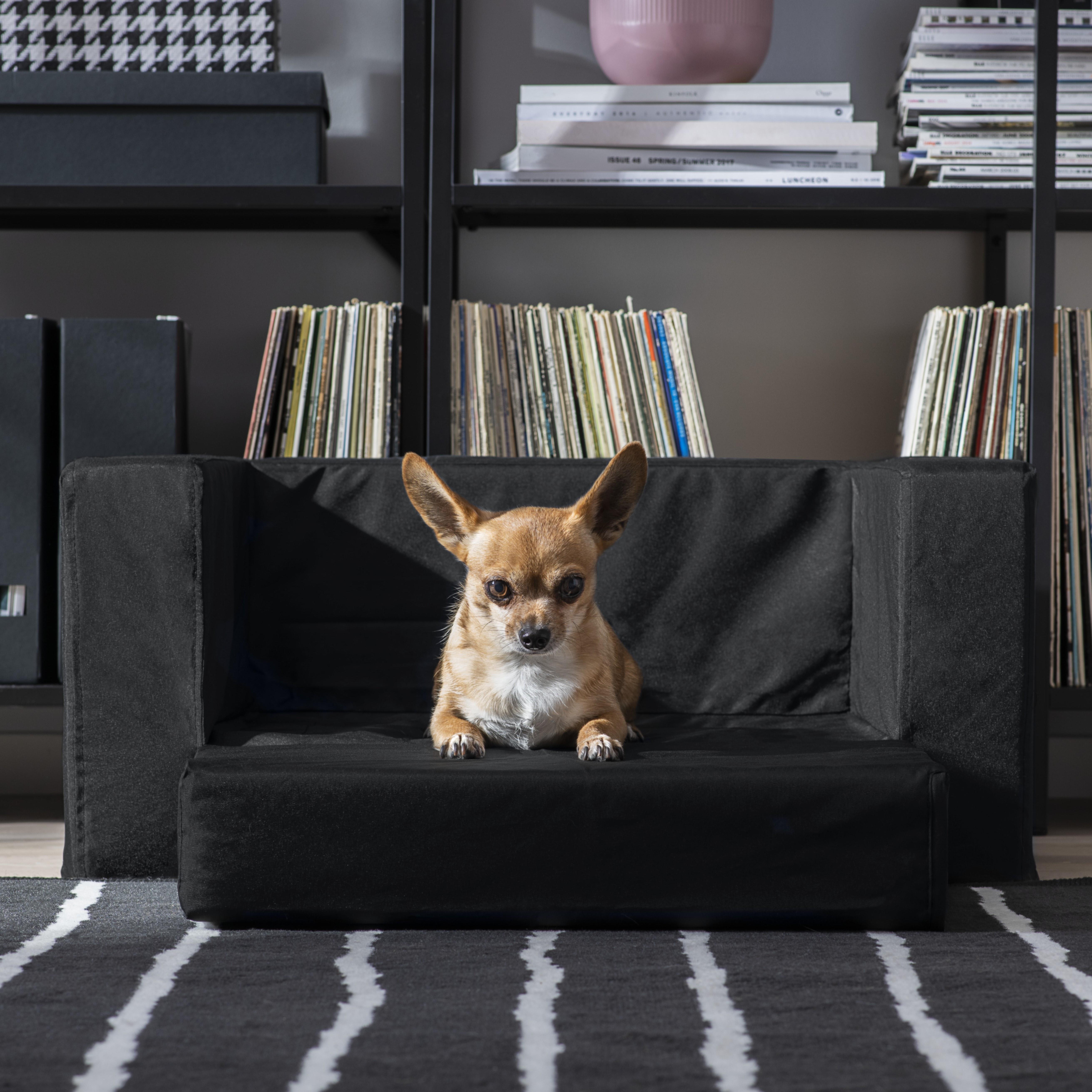 Canape Chien Maison Du Monde 30 meubles et accessoires design pour chats et chiens