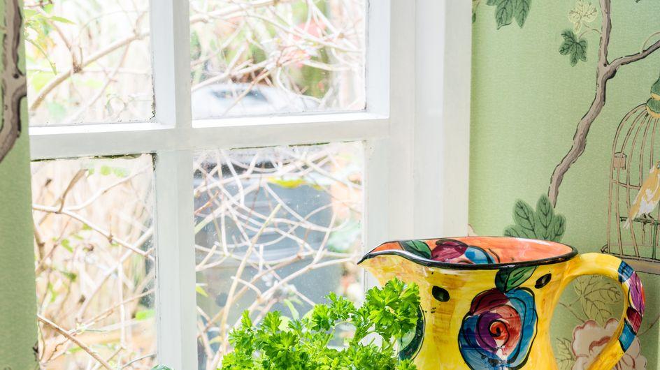 50 fruits et légumes à faire pousser facilement chez soi