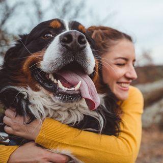 I benefici degli animali domestici