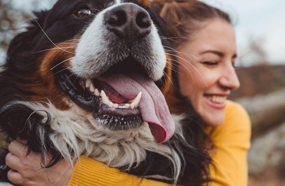 17 motivi per cui cani e gatti ci migliorano la vita