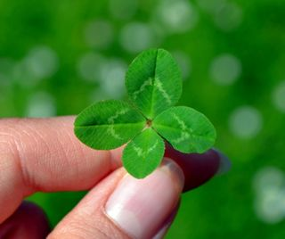 30 porte-bonheur: que la chance soit avec vous