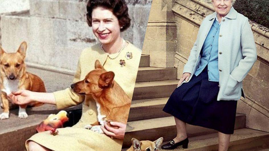 Elizabeth II et ses corgis : une véritable histoire d'amour