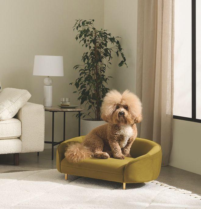 Pour faire la sieste avec style, un mini-canapé tout en courbes. 169 €. Trudy. Made.com