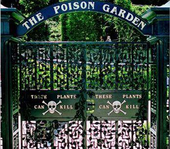 Conheça o jardim mais perigoso do mundo!