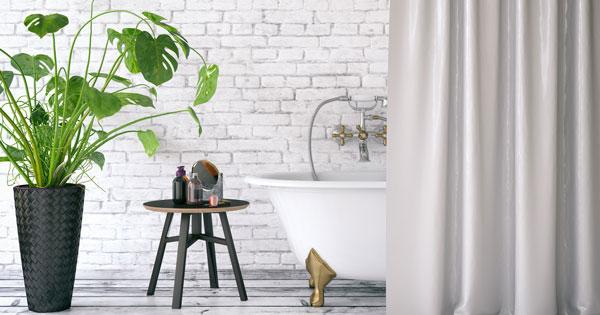 Diese 7 Pflanzen sind bestens fürs Badezimmer geeignet