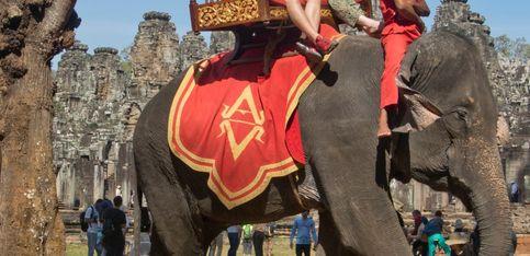 La réalité derrière un cliché de touristes à dos d'éléphant