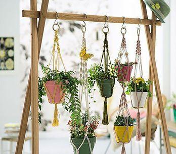 Jardines verticales, la nueva tendencia deco