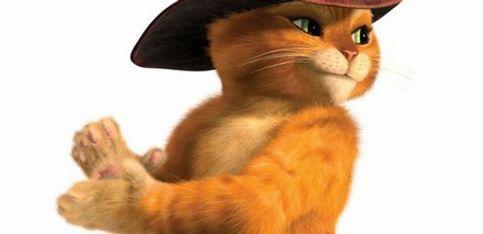 Extrait: Le Chat Potté se lâche sur la piste de danse