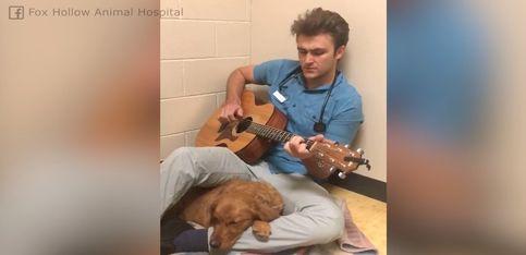 ¡Este chico canta a Elvis para relajar a un perrito!